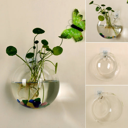 Wall Hanging Hydroponic Glass Vase