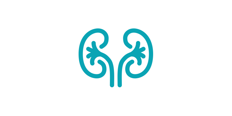 kidney disease line-art icon