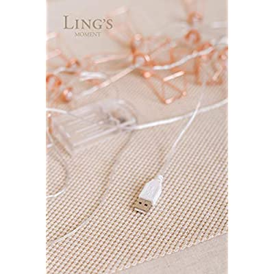 Ling's-moment-Rose-Gold-Wall-Decor-Metal-Geometric-30-LED-Bedroom-Fairy-Lights-USB-Battery-Powered-Metal-Cage-String-Lights-for-Wedding-Party-Indoor-Rose-Gold-Party-Bridal-Shower-Birthday-Party