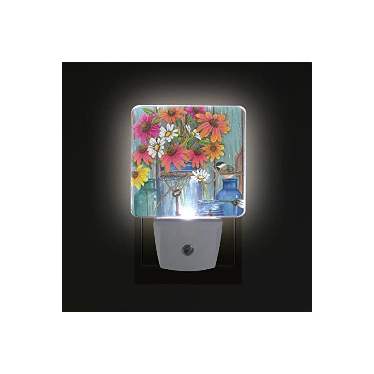 Plug-in-LED-Night-Light-Lamp-with-Light-Sensor,-Farm-Fresh-Flowers-Spr
