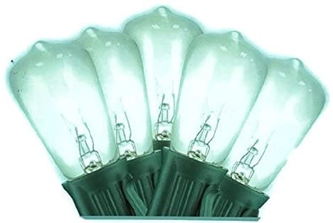 25-Clear-Vintage-Edison-Mini-Light-Bulb-String-Lights-Indoor-/-Outdoor-25-ft