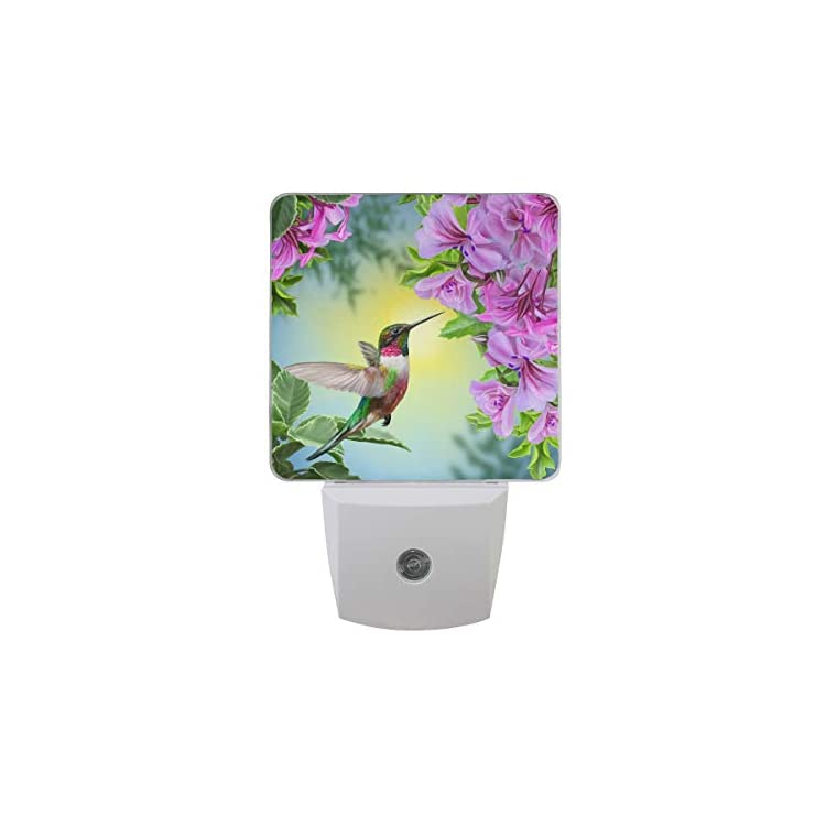 Set-of-2-Hummingbird-Bird-Pink-Flower-Green-Leaves-Floral-Hibiscus-Auto-Sensor-LED-Dusk-to-Dawn-Night-Light-Plug-in-Indoor-for-Adults