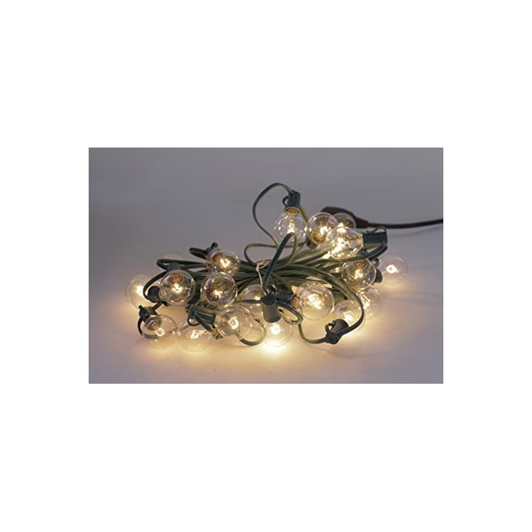 Party-Light-100-Ft-Globe-String-Lights-with-100-Sockets-and-100-Clear-G40-Bulbs,-18-Gauge-Black-Cord