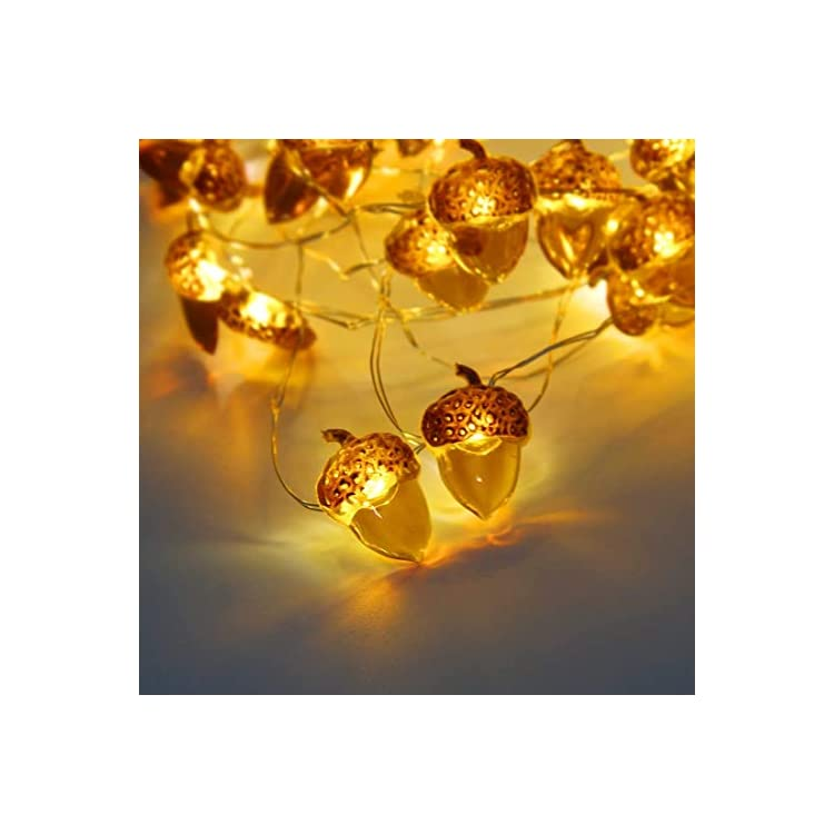 Acorn-String-Lights-10ft-40LEDs-Copper-Wire-with-The-Remote-&-Timer-for-Thanksgiving-Halloween-Christmas-Birthday-Gift-Autumn-Parties-Home-Bedroom-Decoration-(Brown)