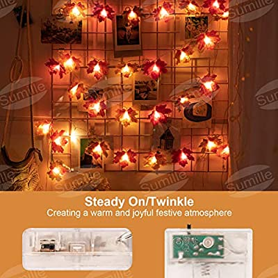 Fall-Decoration-String-Light,-Orange-Maple-Leaves-Fairy-Garland-Lights,-20LED-Waterproof-Light-Fall-Party-Garden-Home-Wedding-Indoor-Outdoor-Decor-(6.5ft)