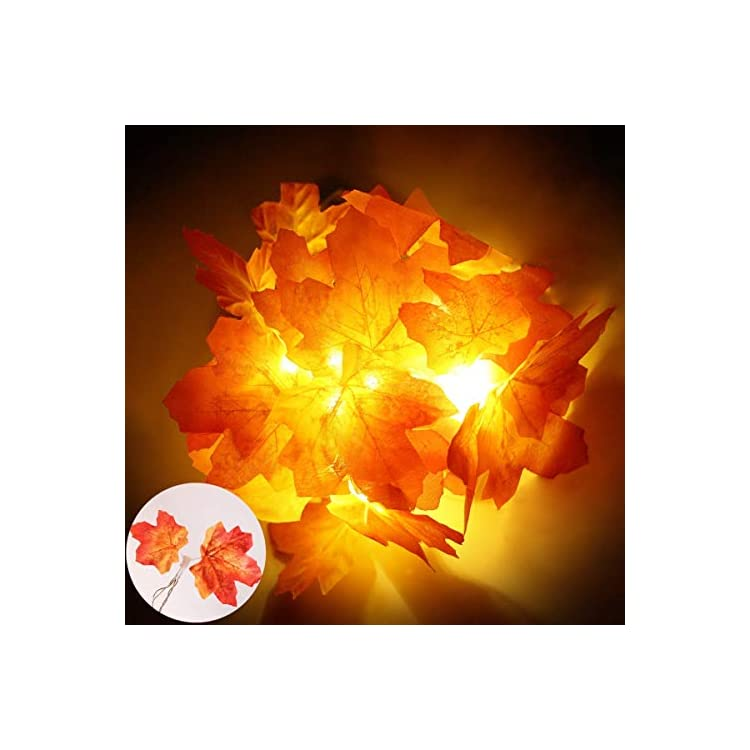 Fall-Maple-Leaves-String-Lights---5FT/10LED-Fairy-Lights-Home-Décor,-3AA-Battery-or-USB-Powered-Autumn-Garland-Maple-Leaf-String-Lights-Decoration-for-Garden,-Thanksgiving,-Christmas