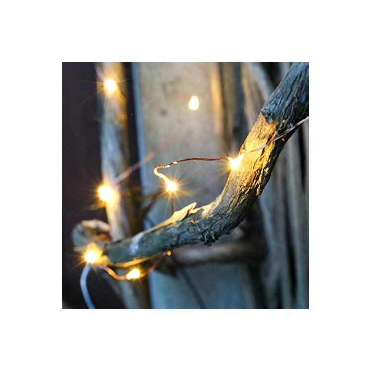 2-Pack-Fairy-String-Lights-Waterproof-8-Modes-60-LED-20ft-String-Lights-Battery-Operated-Copper-Wire-Firefly-Lights-Remote-Control-Decor-Christmas-Lights-Warm-White-(2,-Warm-White)