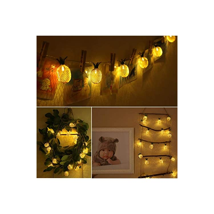 Pineapple-LED-String-Lights-with-Remote-Control-Timer-Battery-Operated/USB-Plug-in-Available-20-Led-Fairy-Lights-for-Bedroom-Garden-Living-Room-Indoor-Outdoor-Home-Decoration-(Warm-White)