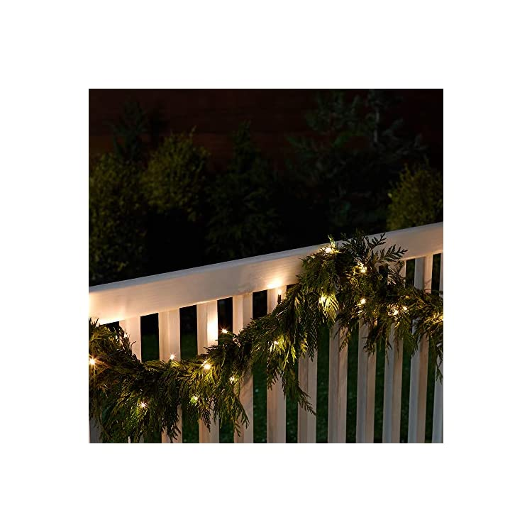 SGL2C50-1-16'-String-light,-16-Foot,-1-pack,-Champagne