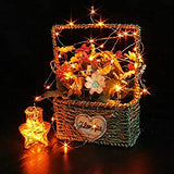 12-Pack-Orange-Fairy-String-Lights-Battery-Operated-Fairy-Lights-Starry-String-Lights-on-3.3ft/1m-Silvery-Copper-Wire-DIY-Christmas-Decoration-Costume-Wedding-Party-Halloween-Easter