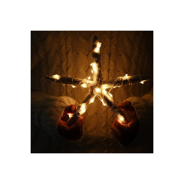 LED-String-Lights-Outdoor-Indoor-6.5ft-20LEDs-Christmas-String-Lights-Decoration-Lighting-Battery-Operated-Perfect-for-Party,-Wedding,-Holiday-Decoration(6Packs-Warm-White)