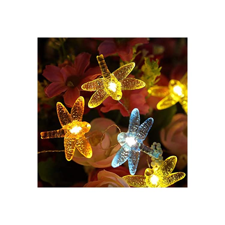 Decorative-Light-String,-Dragonfly-Novelty-Light-Bar-Indoor-and-Outdoor-Warm-White-LED-Light-String,-with-Remote-Control,-Holiday-Party-Garden-Courtyard-Decoration-(13.5-Ft-40-LED)