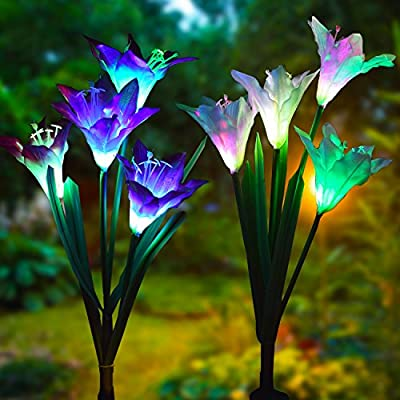 Outdoor-Solar-Garden-Stake-Lights---2-Pack-Solar-Powered-Lights-with-8