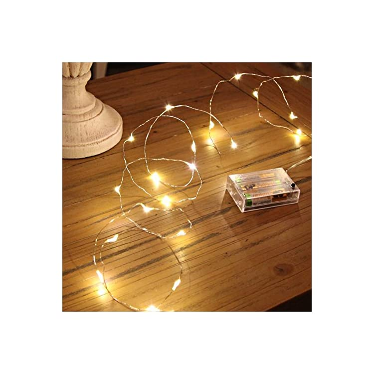 LED-String-Lights,-16.5Ft/5M-50leds-Battery-Operated-Fairy-Lights-for-Garden-Home-Party-Wedding-Festival-Decorations(Warm-White)