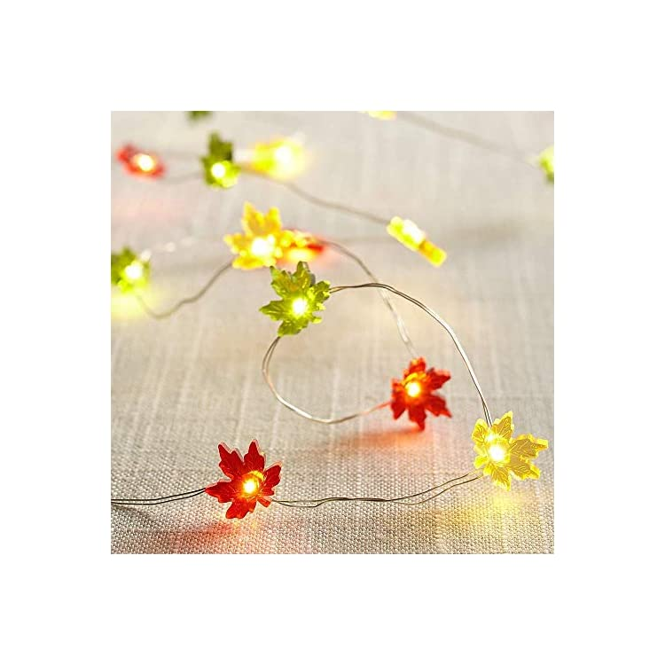 MENGNAN-Maple-Leaf-String-Lights-with-The-Remote-Control-10ft-Copper-Wire-40LEDs-for-Halloween-Thanksgiving-Indoor-Outdoor-Birthday-Parties-Home-Bedroom-Decoration-(Red,-Yellow,-Green)
