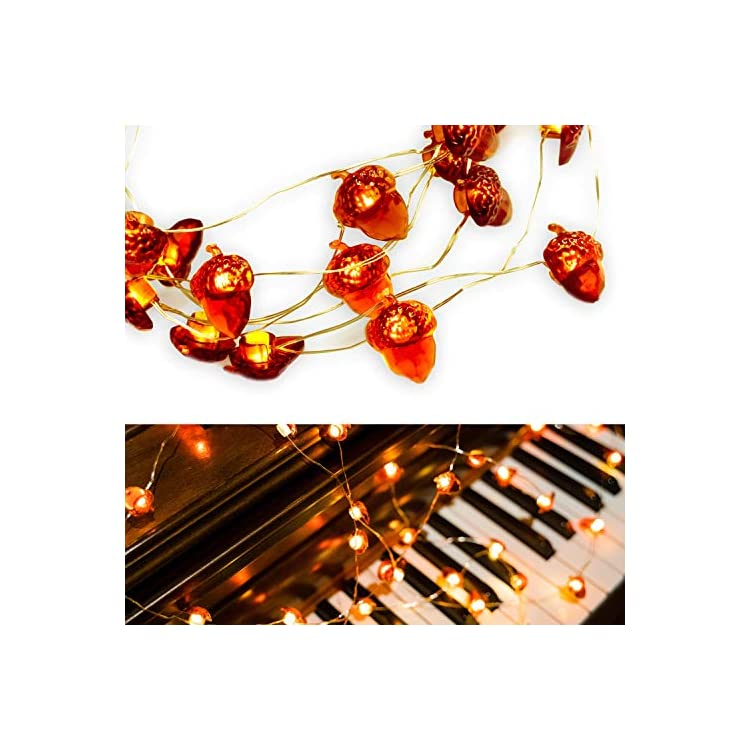 Indoor-String-Lights-40LEDs-Battery-Operated-String-Light-Fairy-String-Lights-for-Festival-Lights-Outdoor-Decor-with-Remote-Control-and-Timer