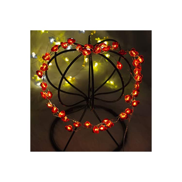 Love-String-Lights,-40-LED-Red-Heart-Indoor-Decorative-String-Lights-with-Remote-and-Timer-for-Bedroom,10-Feet