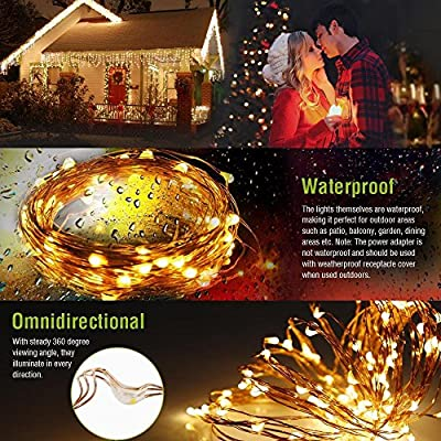 165ft-Led-String-Lights,500-Led-Starry-Lights-on-50M-Copper-Wire-String-Lights-+-12V-DC-Power-Adapter-+-Remote-Control(Warm-White)