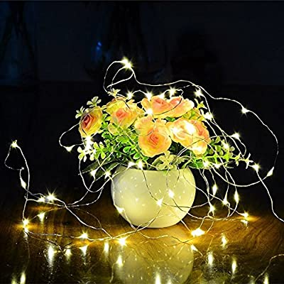 8-Model-Indoor-and-Outdoor-Waterproof-Battery-Operated-200-LED-String-Lights-on-66-Ft-Long-Ultra-Thin-Silver-Coating-Copper-Wire-Lighting-with-13-Key-Remote-Control(Green)