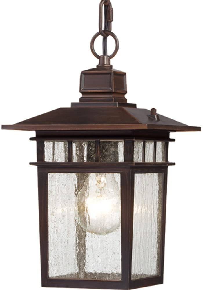 Nuvo-Lighting-60/4955-Cove-Neck-One-Light-Hanging-Lantern-100-Watt-A19