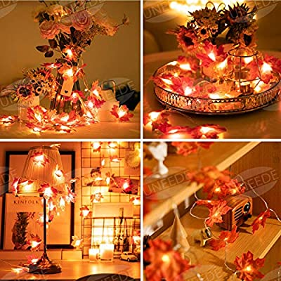 Fall-Decor-Maple-Leaves-String-Light,-Waterproof-Thanksgiving-Decorations-Fall-Seasonal-Lights-3AA-Battery-Powered-Lighted-Garland-for-Holiday-Party-Indoor-Outdoor-Halloween-Thanksgiving-Decor