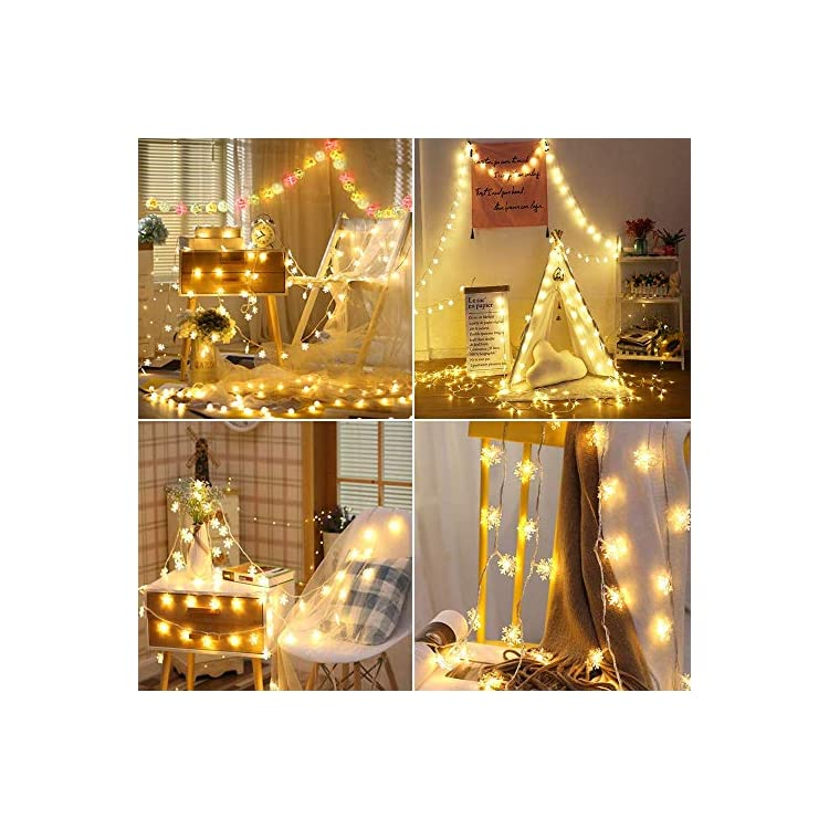 Snowflake-String-Lights,-Plug-in-String-Lights-33ft/10m-100-LED-Warm-White-Fairy-Lights-for-Christmas/Wedding/Party-Indoor-and-Outdoor-Decoration
