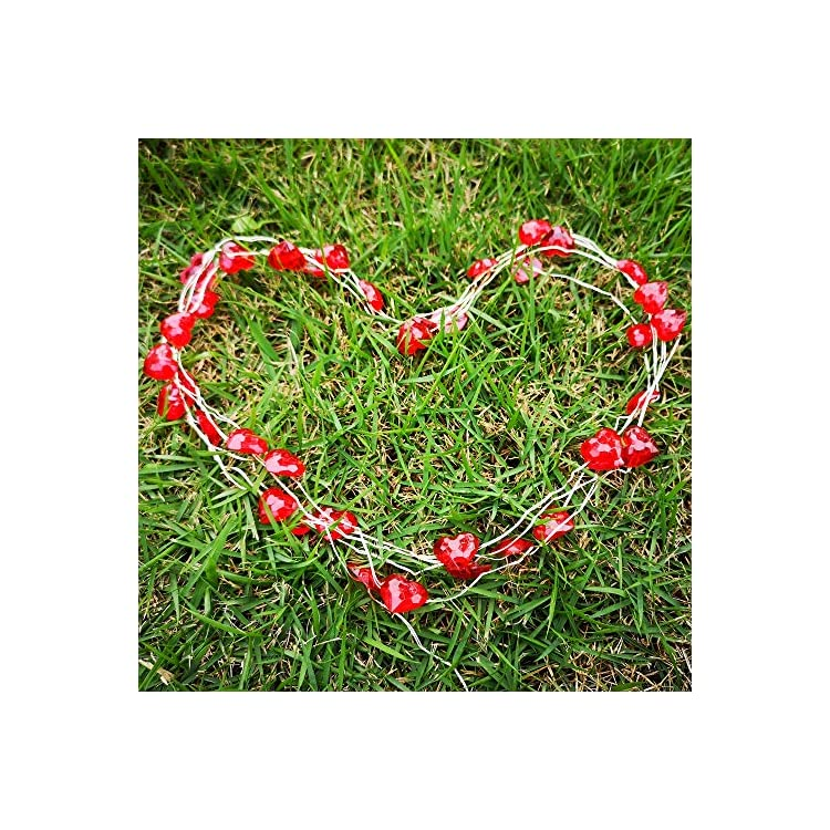 Heart-String-Lights-Valentine's-Day-Decorative-Lights-12-Modes-with-Remote&Timer,-10ft-40-LED-Waterproof-Silver-Wire-Battery-Operated-Fairy-Lights-for-Indoor/Outdoor-Party,-Wedding-Red