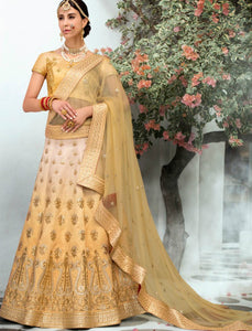 Amazing VAS1206 Shaded Beige Silk Net Lehenga Choli - Fashion Nation