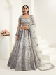 Wedding Special Grey Net Designer Lehenga Choli by Fashion Nation