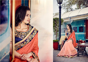 N4046 Ethnic Peach Blue Chiffon Net Saree - Fashion Nation