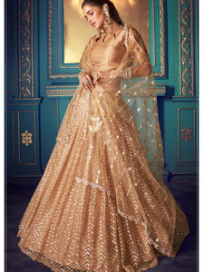 Party & Occasion Wear Sequined Lehenga Choli for Online Sales by Fashion Nation