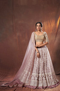 Sangeet Party Wear Designer Lehenga Choli by Fashion Nation