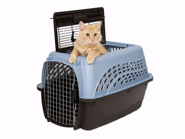 Cat Carrier Introduction