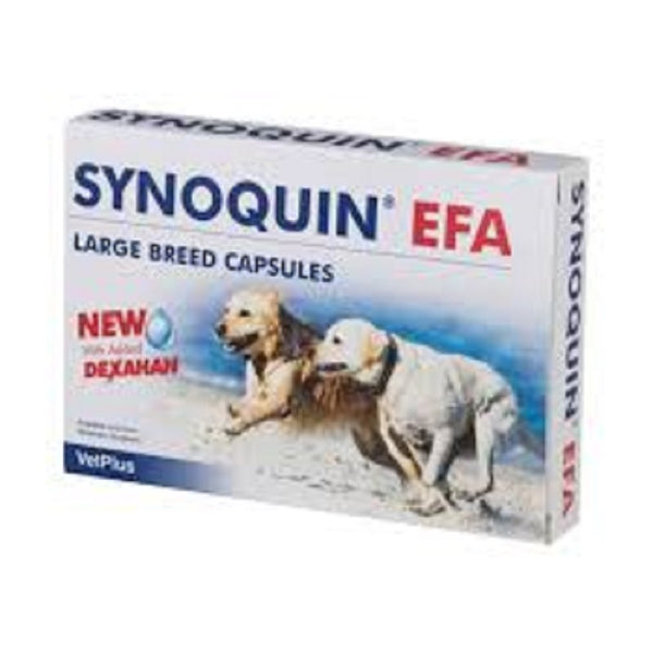 Synoquin EFA Canine >25kg