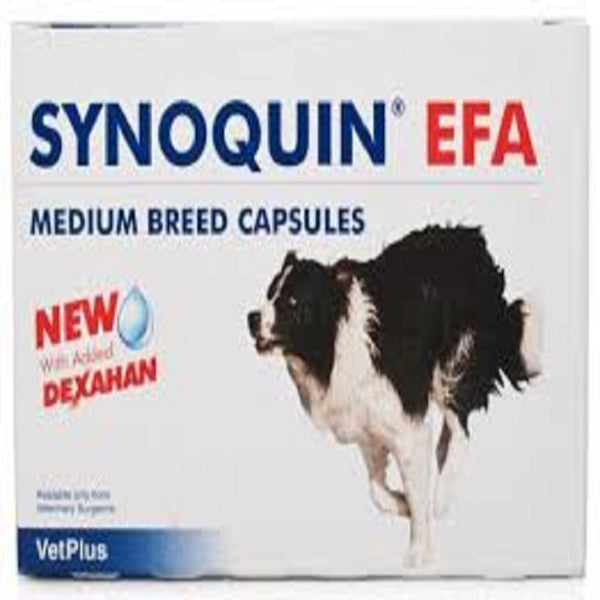Synoquin EFA Canine Medium Breed 10-25Kg