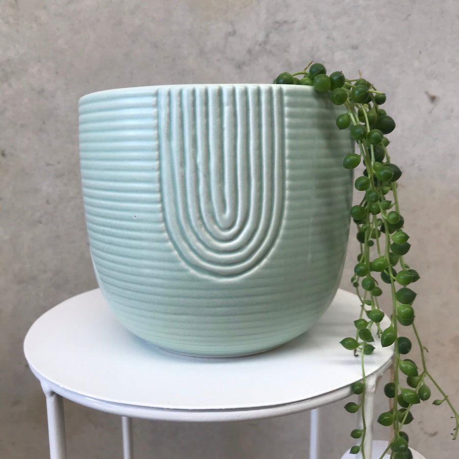 Rainbow Planter Mint Small