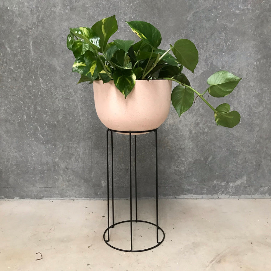 Alice Pot Hand Painted Concrete Blush