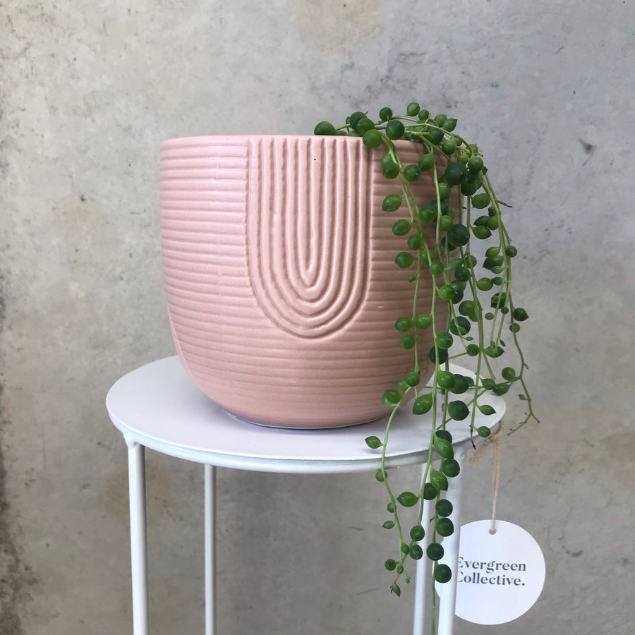 Rainbow Planter Pink Small