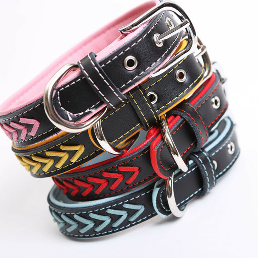Product 5 - Dog Collar