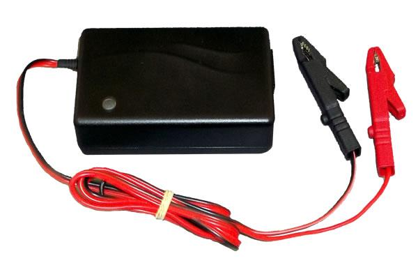 12V 2A Charger for Lithium Batteries - Dms Shop