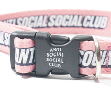 Load image into Gallery viewer, anti social social club VVS dog collar