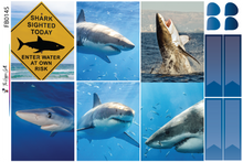 Load image into Gallery viewer, Shark Week 2020 Weekly Kit