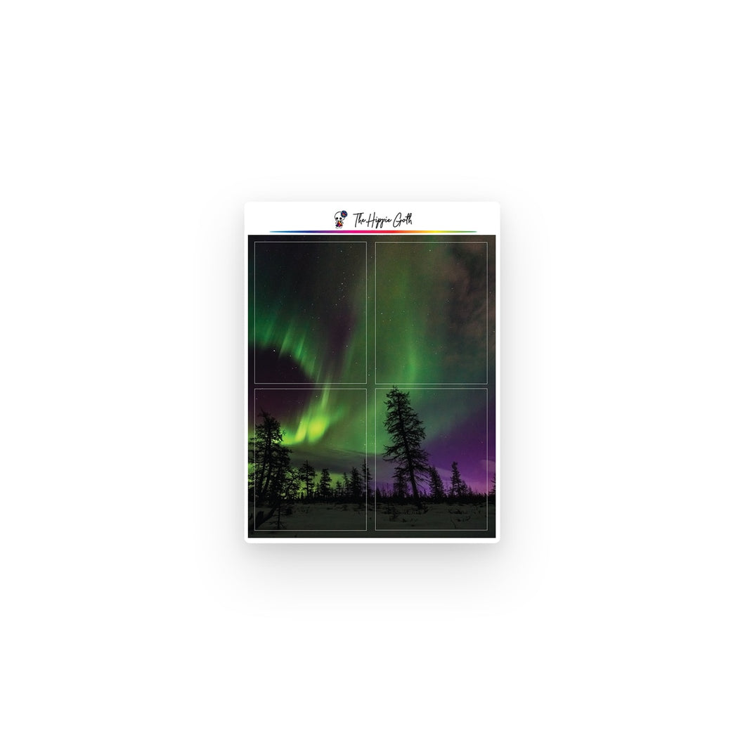 Northern Lights Full Boxes