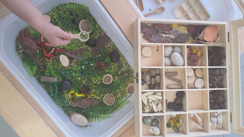 sensory bin by speech pathologist