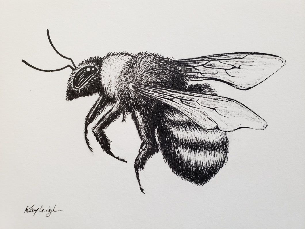 Bumble Bee-Original