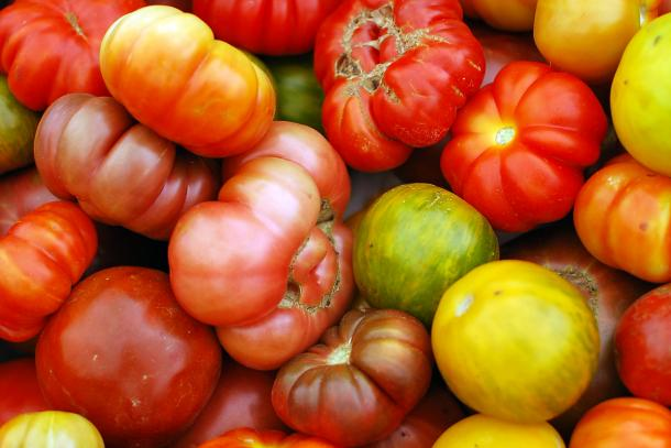 Heirloom Tomatoes, 10 lbs