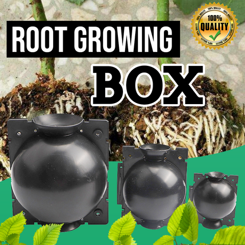 Image of Root Growing Box