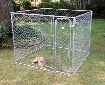 Small Boxed Kennel