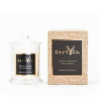 Waterlily & Jasmine - HartCo - Small Classic