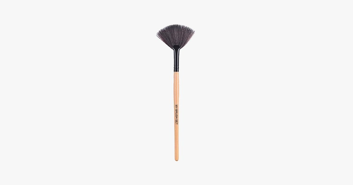 Fan Brush - FREE SHIP DEALS